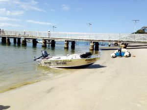 cabbage tree point store - boat hire